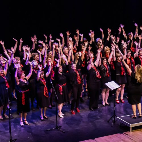 Lisburn Harmony Ladies Choir
