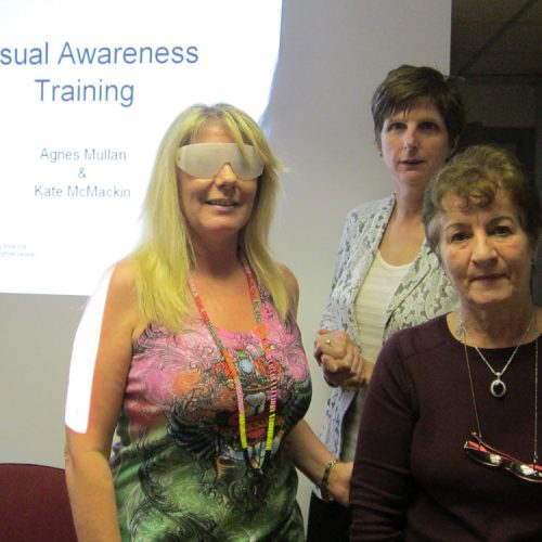 VAT_RNIB_training