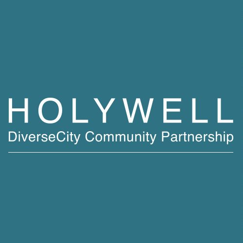 holywell-diversecity-partnership-ft
