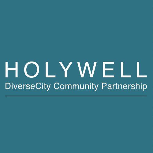 holywell-diversecity-partnership-ft