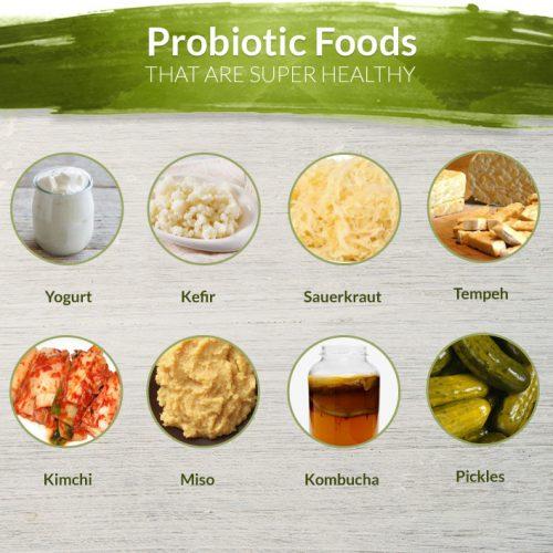 pro biotic foods